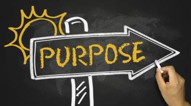 purpose-1
